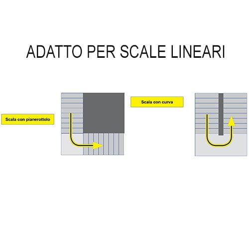 Lg 2004 Basic Scale 1