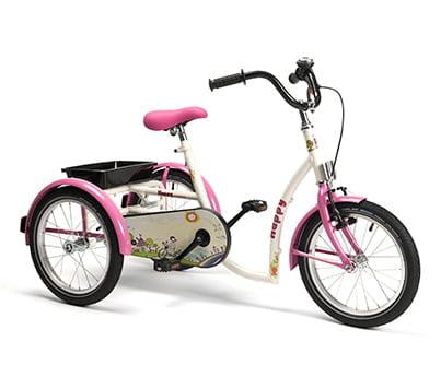 Web Tricycle Model Happy Bis