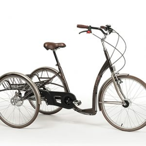 Web Tricycle Adult Retro Vintage Brown
